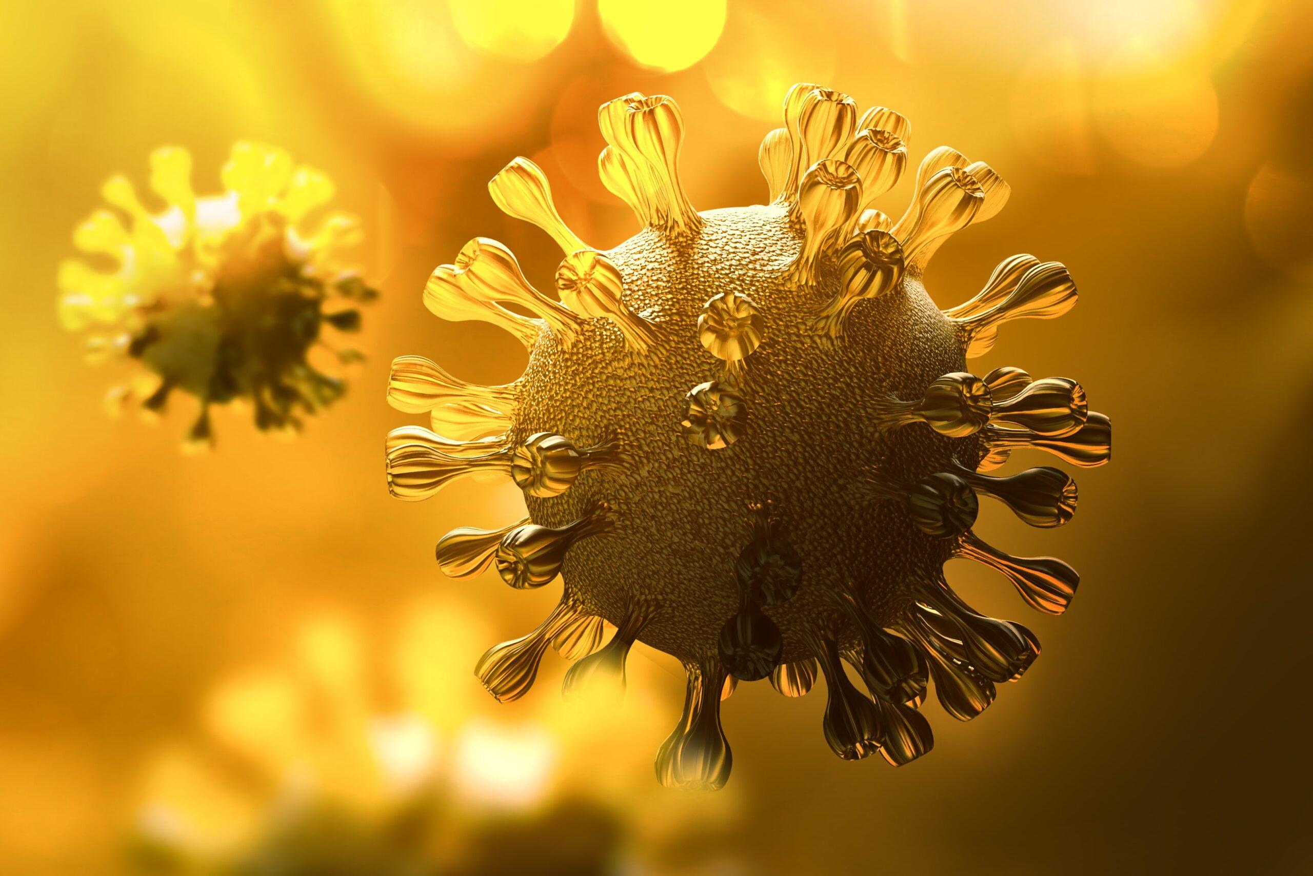 coronavírus - coração