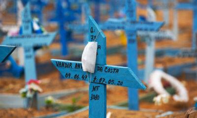 media mortes covid brasil