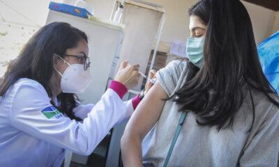 vacina df